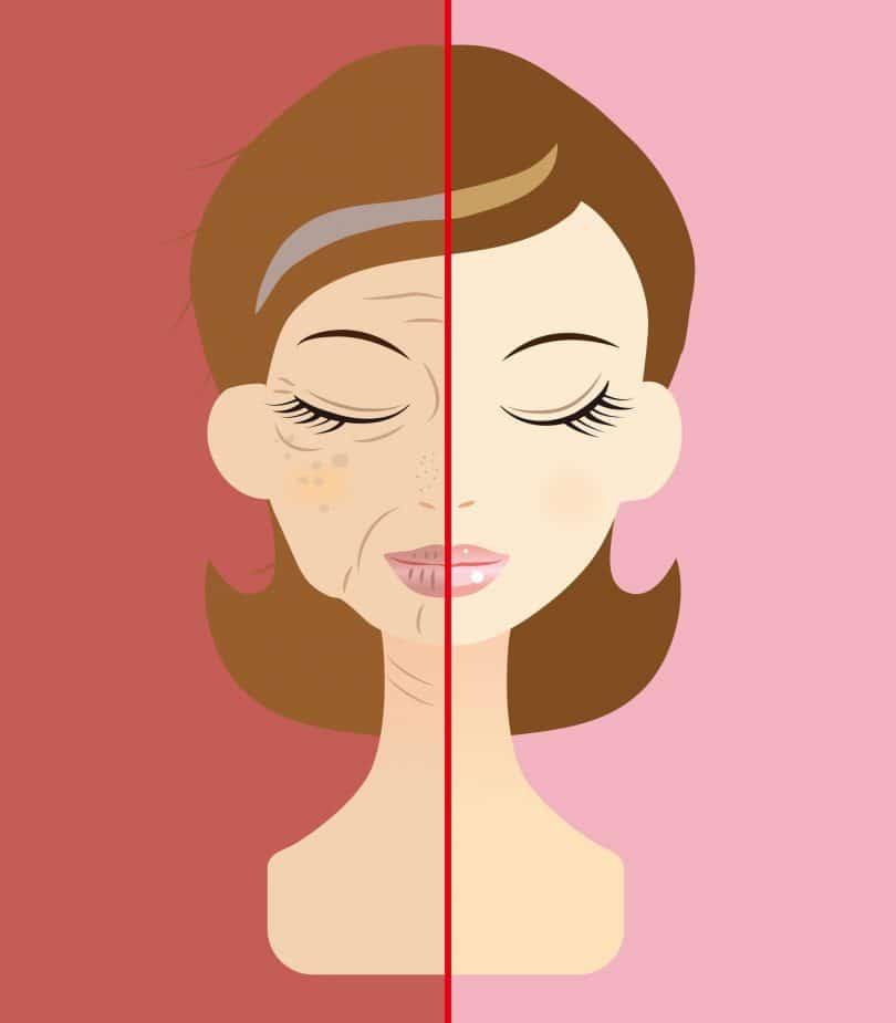 ilustração de rosto de mulher dividido ao meio, com um lado jovem e um lado envelhecido.