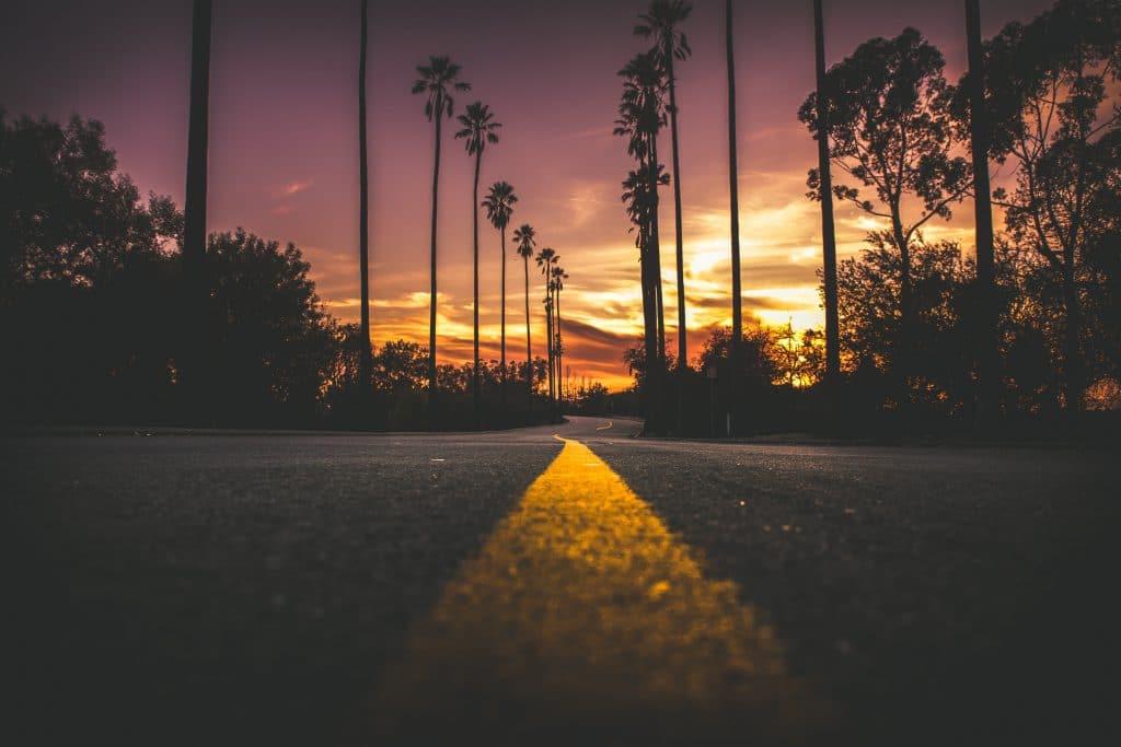 Visão de baixo de uma rua. Ao fundo da imagem, paisagem de palmeiras e céu rosa alaranjado. Muita luz do sol na foto.