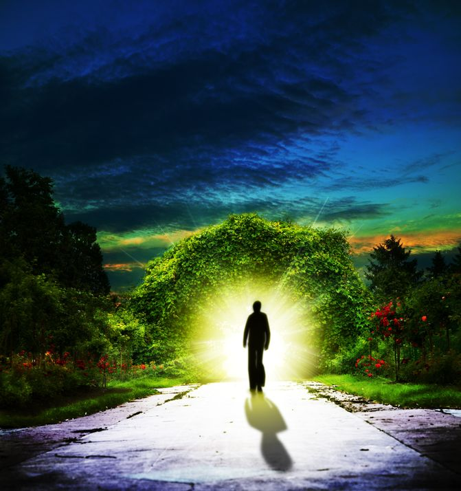 Pessoa andando em direção a um jardim iluminado