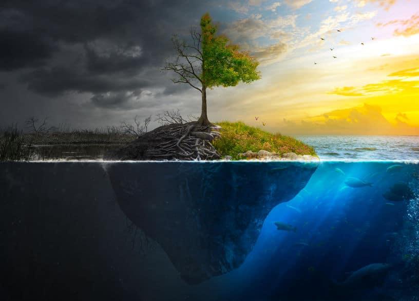 Contraste entre a vida e a morte através de uma árvore. Um de seus lados está escuro, outro colorido, ensoloarado, com um oceano cercando-a