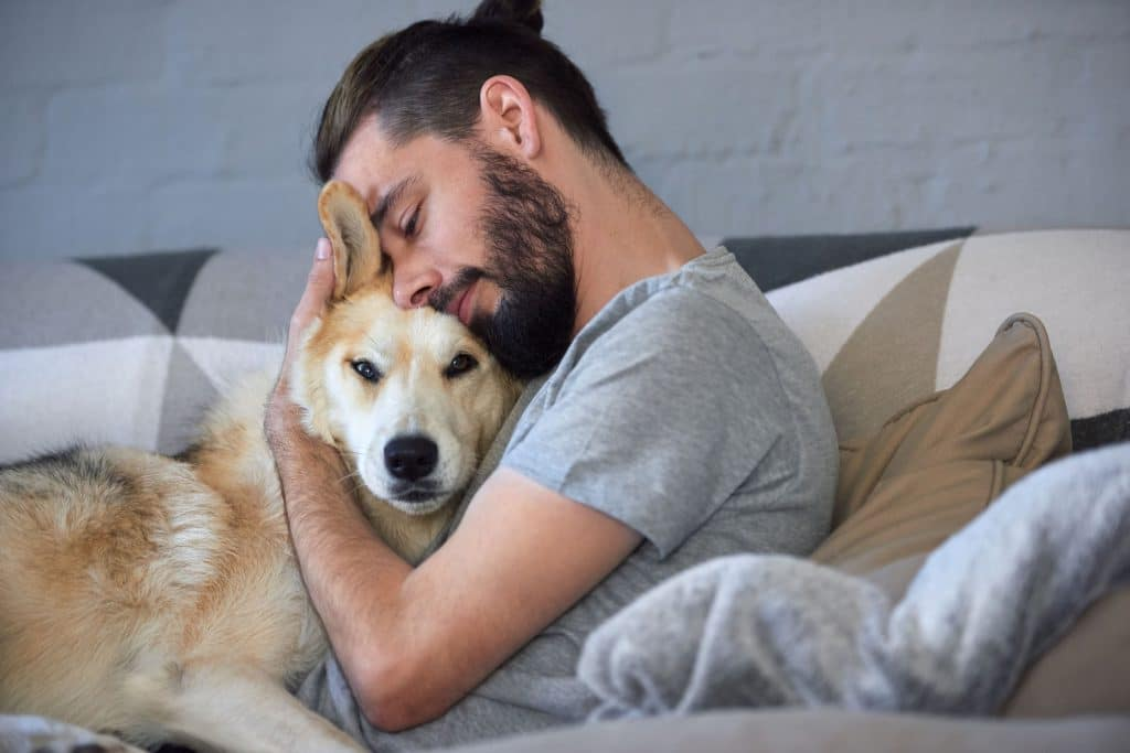 cachorro sendo abraçado pelo seu dono