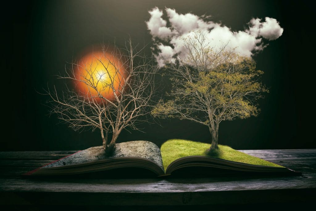 ilustração de livro aberto ao meio, onde um lado tem uma árvore florida, grama verde e nuvens, enquanto o outro lado contém uma árvore seca, um chão de terra seca e um sol. A ilustração representa opostos.