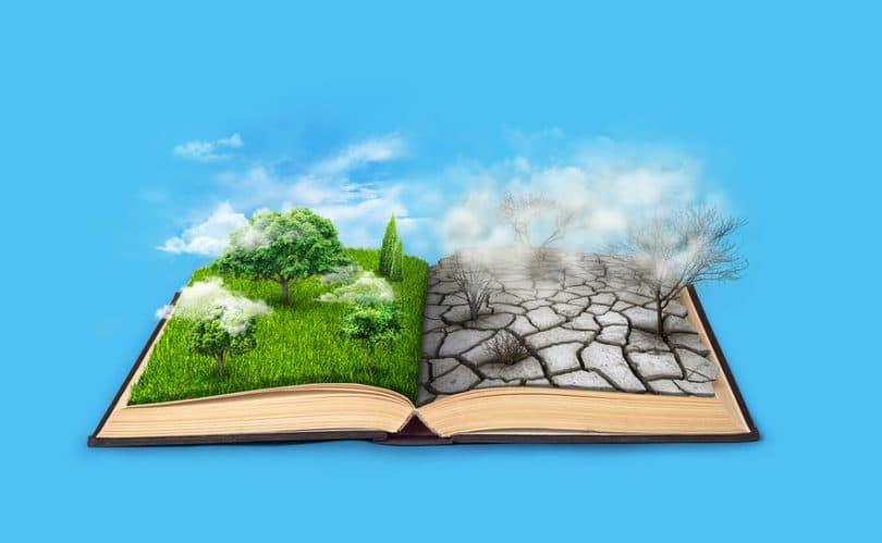 Livro aberto, página do lado esquerdo com árvores e grama, página do lado direito piso em erosão.
