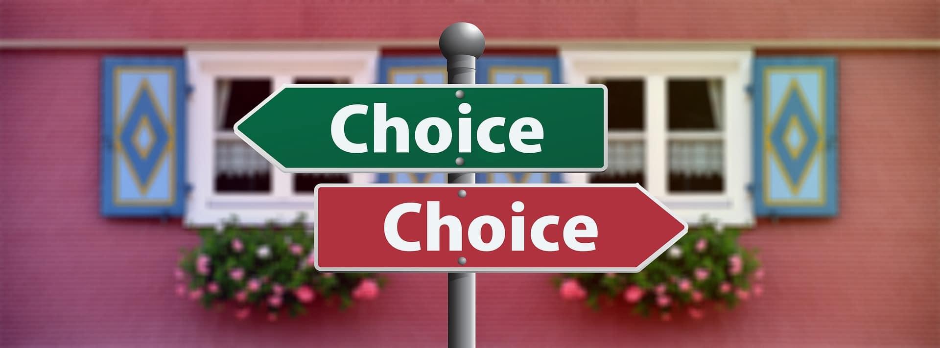 """Placas apontando em sentido contrário, ambas com a palavra """"choice"""" (que significa escolha). A placa está na frente de uma janela com flores."""