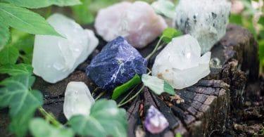 Pedras de cristais diversos sobre um tronco de árvores cortadas em meio a folhas verdes.