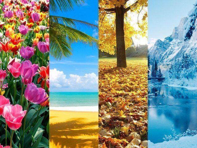 Imagem divida em quatro, cada parte simbolizando uma estação do ano.