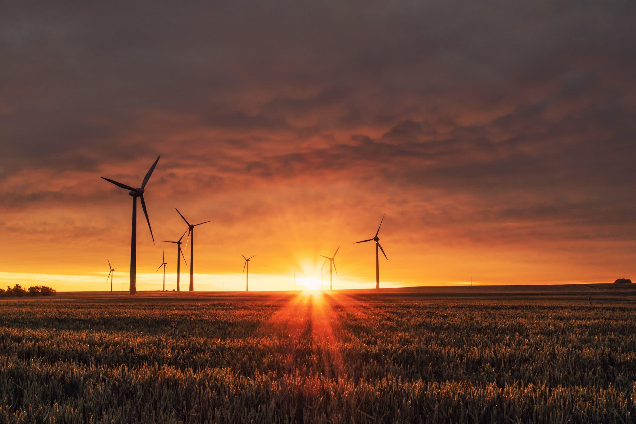 Campo com vários moinhos de vento sob o pôr-do-sol no horizonte, transmitindo luz e energia.