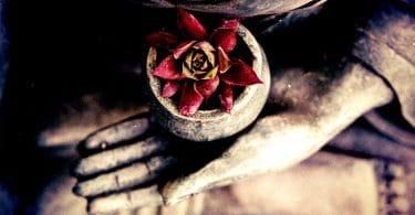 Foto de mão de estátua de pedra segurando um vaso com uma pequena flor de lótus.