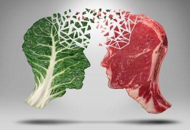Duas formas de cabeça, uma feita de folhas vegetais e uma feita de carne vermelha, uma de frente para outra.