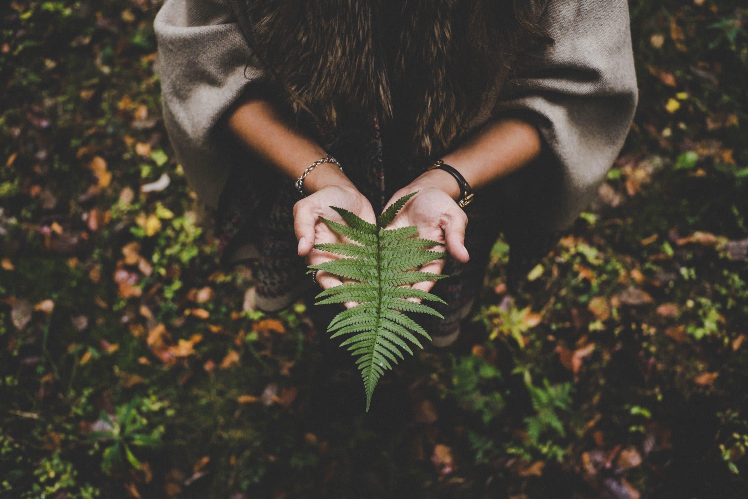 Garota segurando uma folha nas mãos, sentada em meio à natureza.