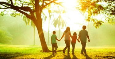 Família andando de mãos dadas em um campo, ao lado de uma árvore e com o sol brilhando ao fundo.