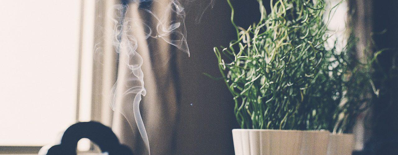 Incenso sendo queimado em uma casa ao lado de uma pequena planta.