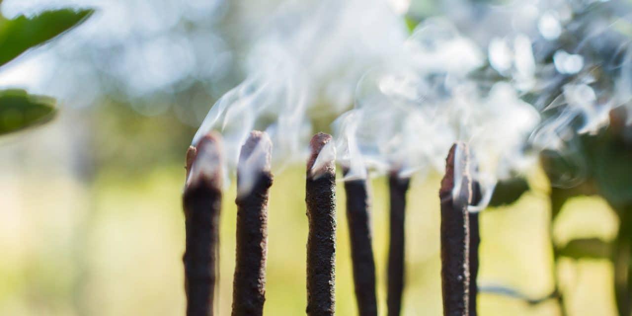 Incenso de mirra queimando e soltando fumaça.