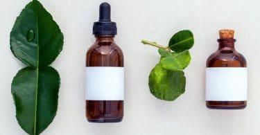 Folhas e óleos essenciais de bergamota