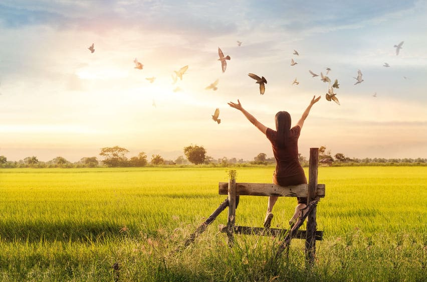 Mulher sentada em uma cerca, com pássaros voando e um pôr do sol de fundo