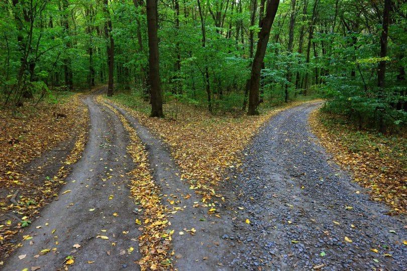 Duas trilhas indicando para caminhos diferentes.