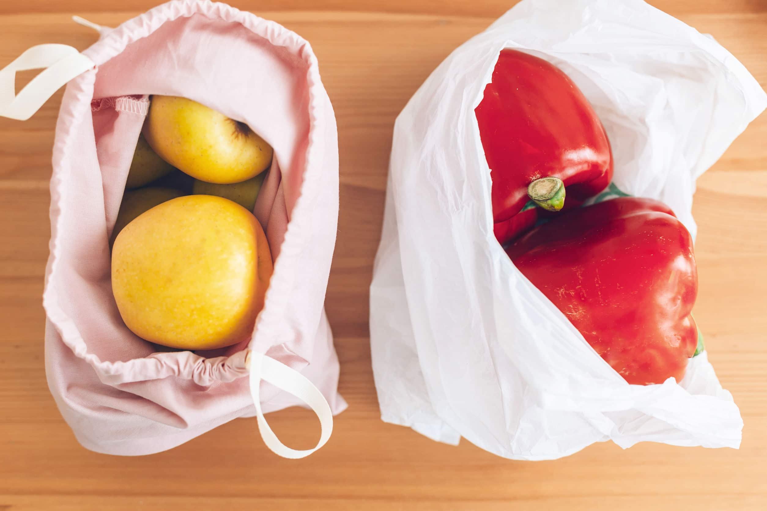 Sacola sustentável ao lado de sacola de plástico.
