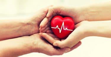 doação de órgãos: dois pares de mãos de pessoas brancas, um par segura um coração vermelho de plástico enquanto o outro par está abaixo do primeiro.