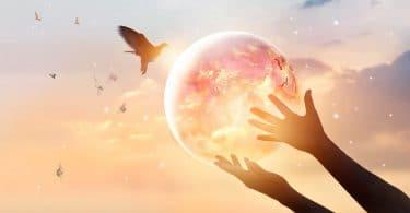 Mãos segurando um globo iluminado que está próximo a um pássaro.