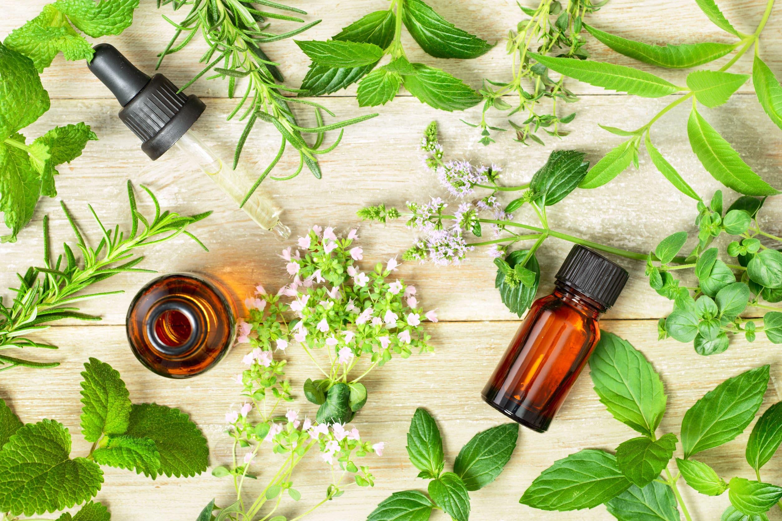 Frascos de óleos essenciais ao lado de folhas verdes.