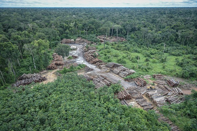 Área de desmatamento na floresta amazônica.