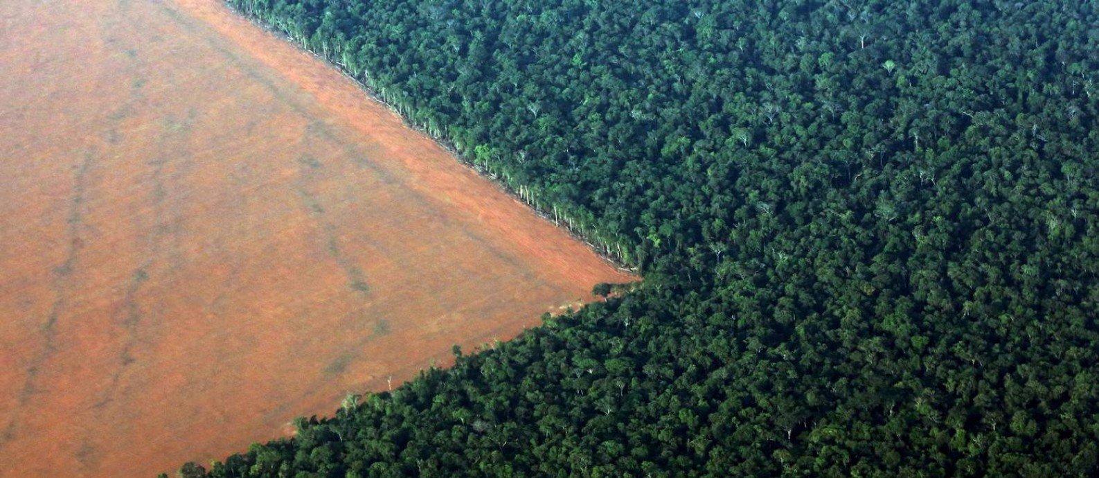 Trecho desmatado da floresta Amazônica.