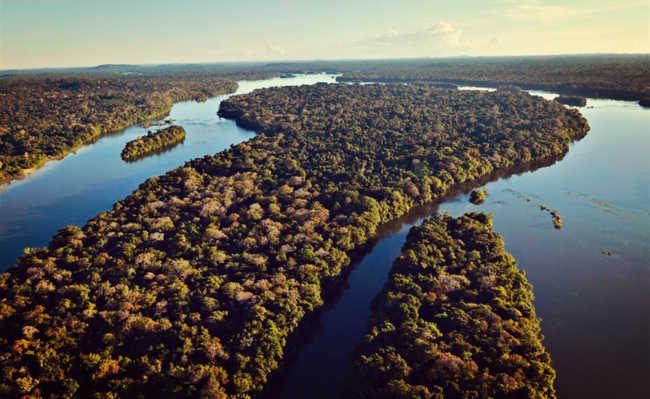 Floresta amazônica banhado por rios.
