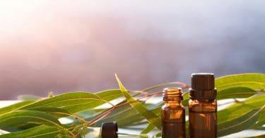 Dois frascos de óleo de vetiver em frente a folhas de vetiver.
