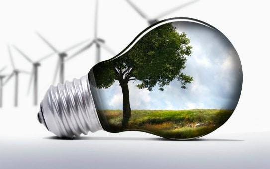 Ilustração de lâmpada com árvore dentro.