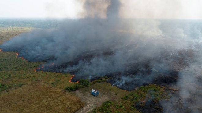 Área de Amazônia queimada vista de cima
