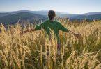 Mulher de costas no meio do trigo