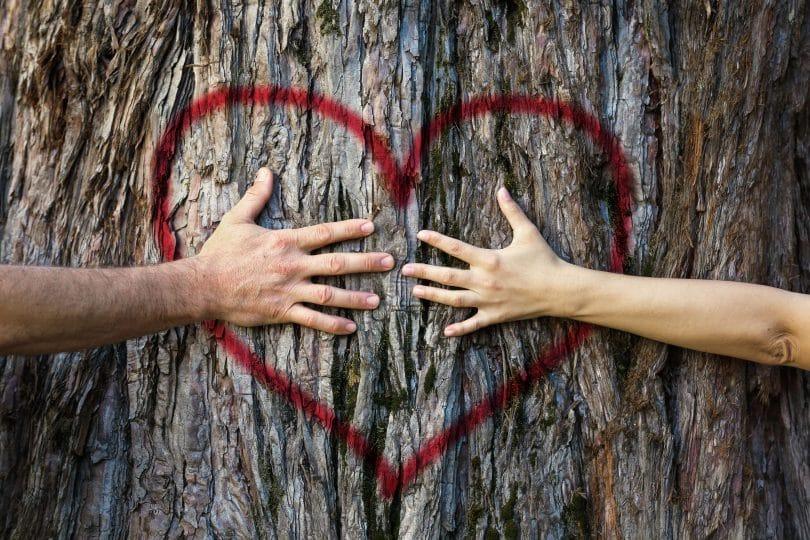Mãos de duas pessoas abraçando o tronco de uma árvore com coração vermelho pintado
