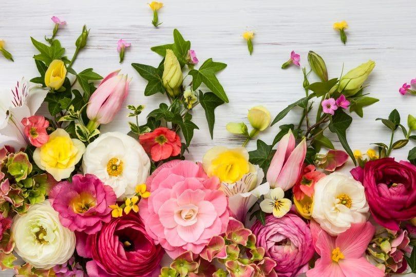 Quadro de flores sobre fundo branco de madeira.