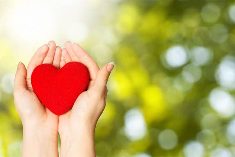 Coração vermelho na palma das mãos.