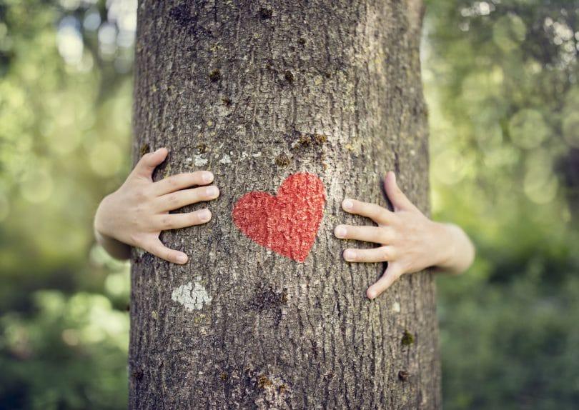 Tronco de árvore sendo abraçado.