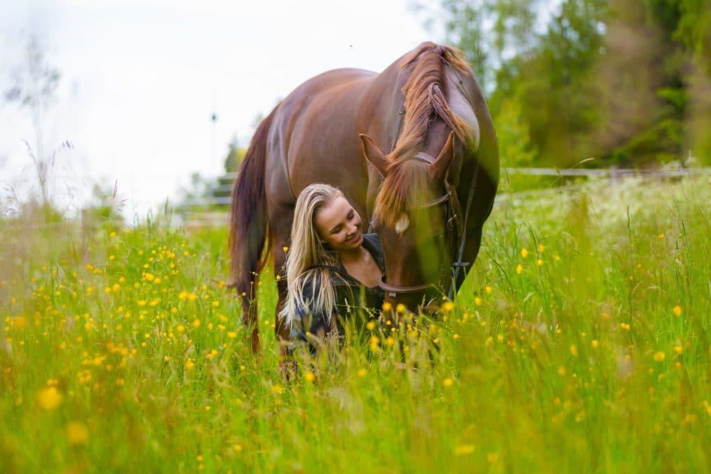 mulher alimentando cavalo na natureza