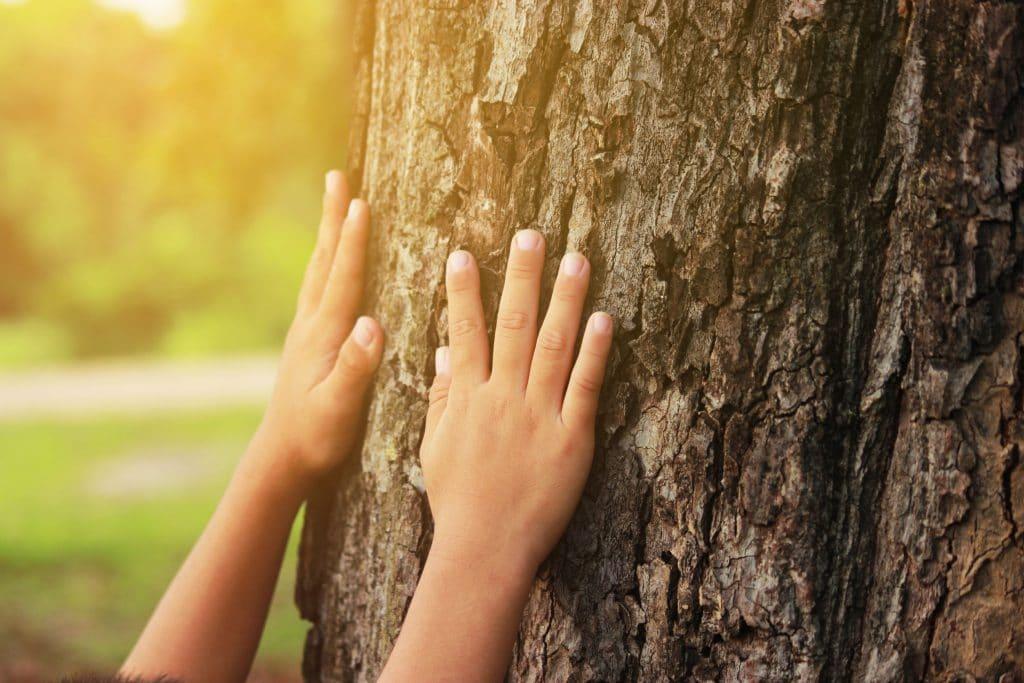 criança se conectando com a natureza