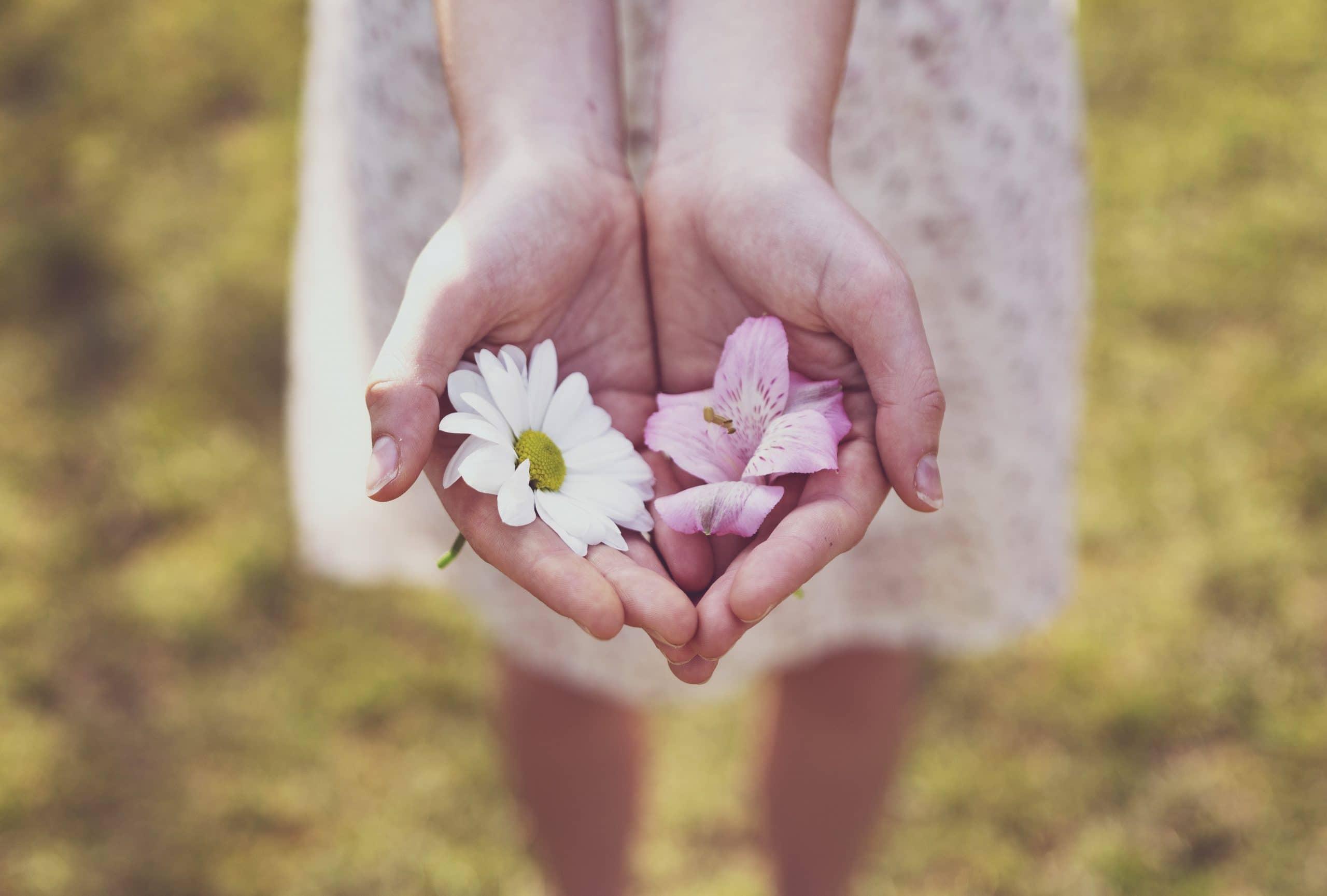 Mãos femininas segurando duas flores.