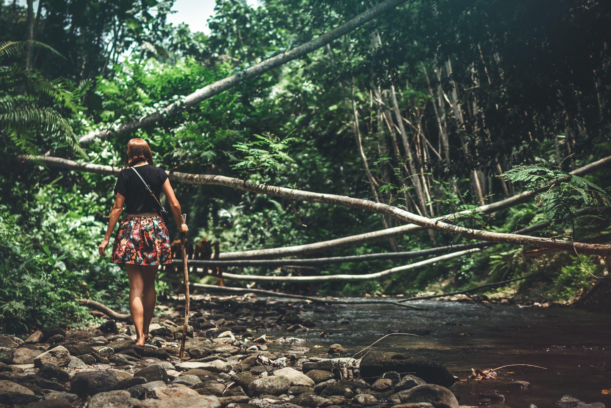 Mulher de costas caminhando em floresta