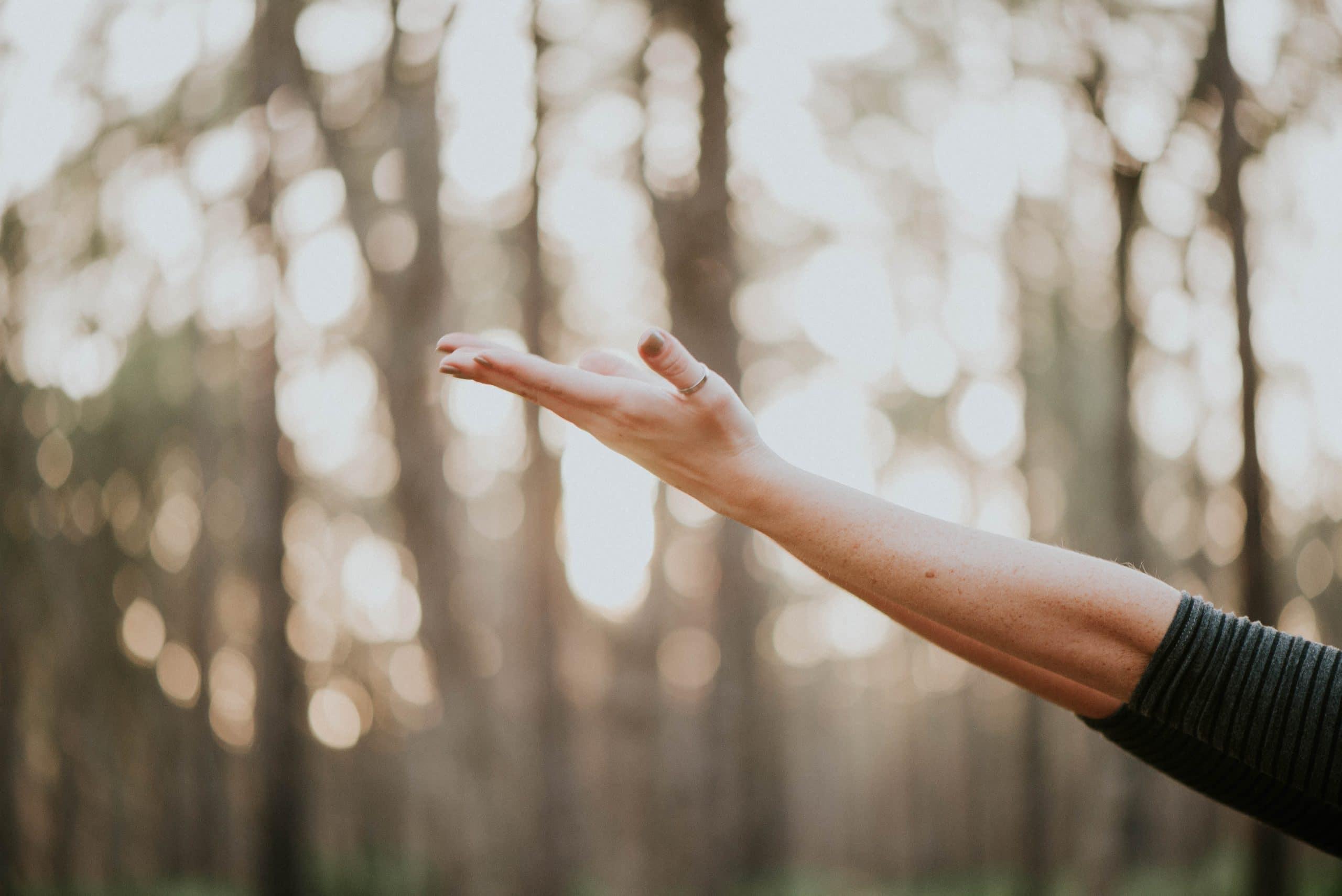 Mão para cima com fundo de árvores