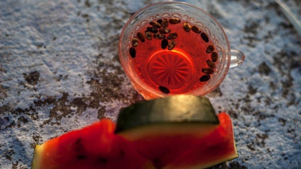 Chá de semente de melancia.