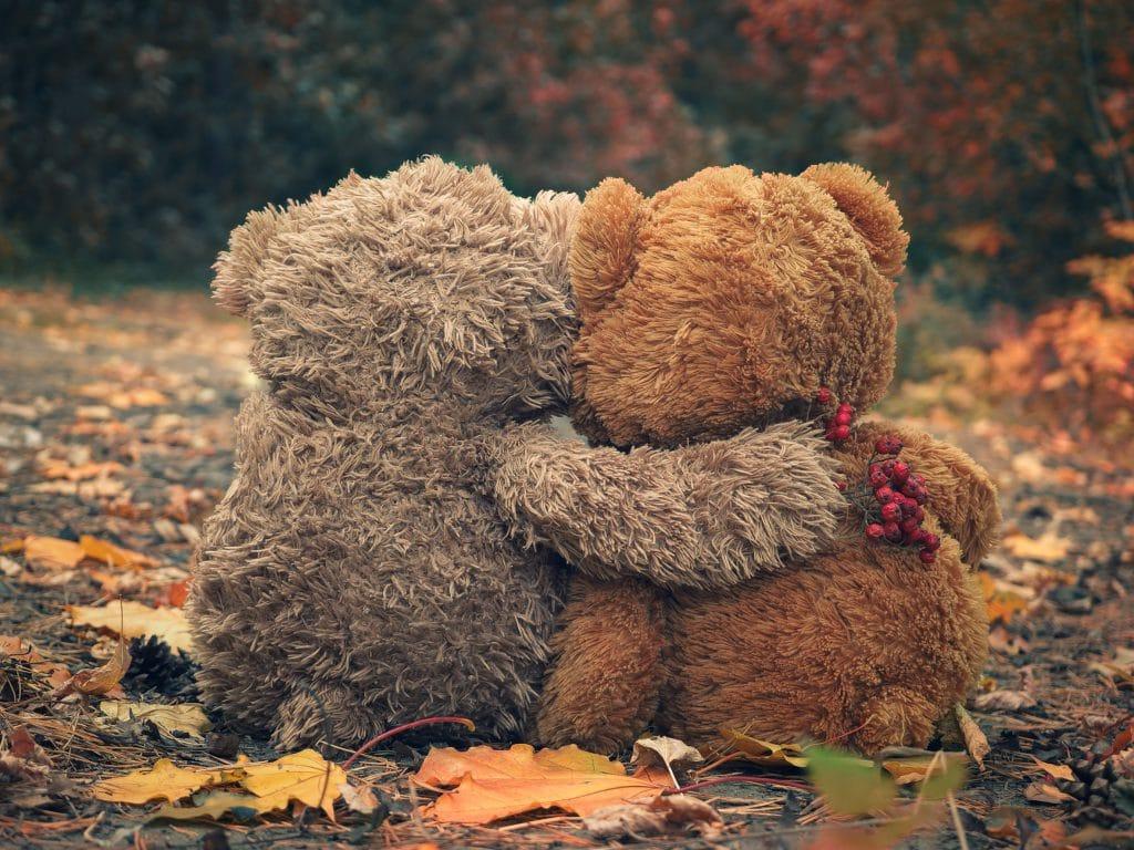 Ursinhos de pelúcia se abraçando.