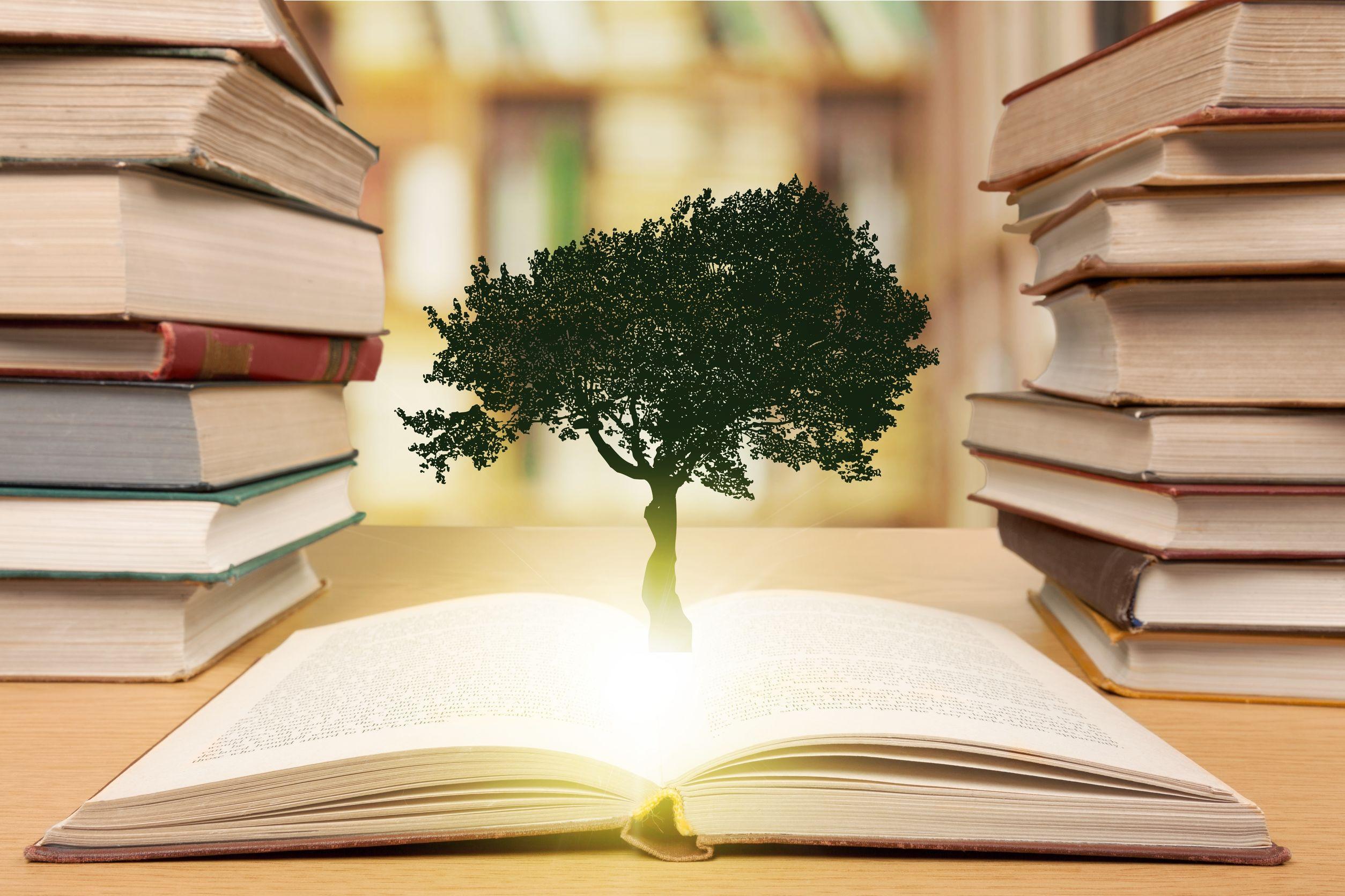 Livro aberto com uma árvore crescendo no meio.