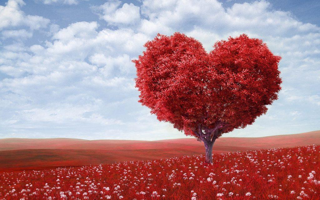 Árvore de coração