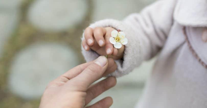 Criança entregando flor para pessoa.