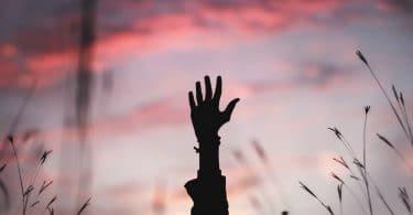 Silhueta de mão estendida para cima, no meio de uma plantação de trigo, ao fundo há o céu do final da tarde, nas cores azul, rosa e roxo.