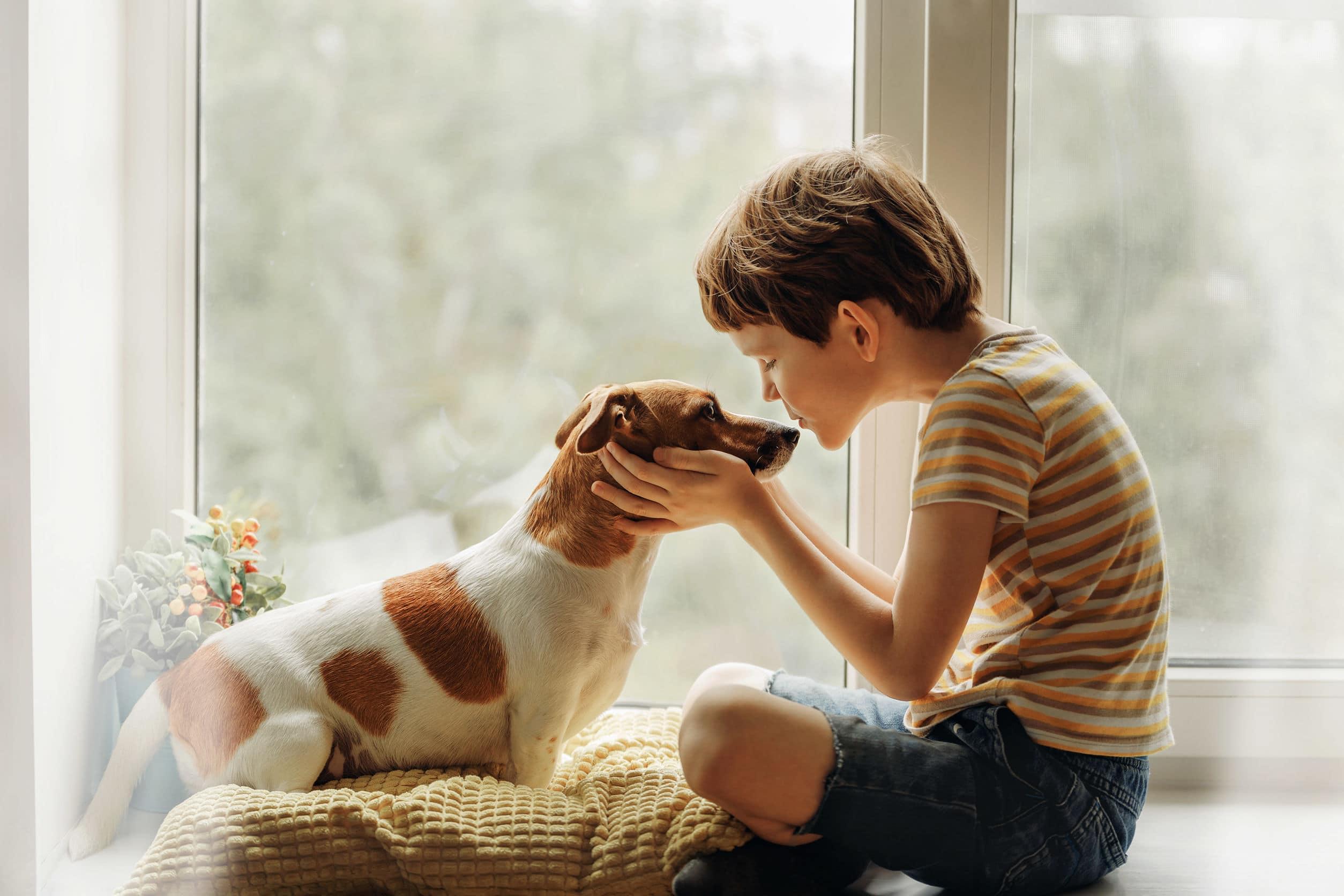 Menino beihando cachorro.