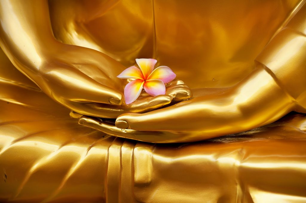 Flor de Frangipani sendo segurada pelas mãos de Buda. A imagem é na cor dourada e a flor é amarela e rosa.