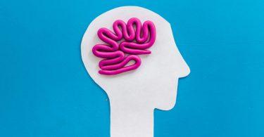 Montagem com o contorno de um rosto em um papel branco liso, e linhas sinuosas rosas representando o cérebro.