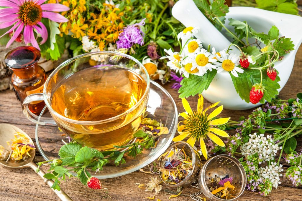 Xícara de chá herbal, com muitas plantas em volta e um pilão em cima de uma mesa de madeira.